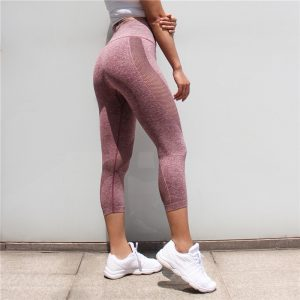 Mesh Cropped Legging